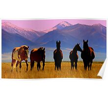 Loneliest Road In America Wild Horse Herd  Poster
