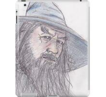 Gandalf the Grey iPad Case/Skin