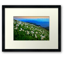 Flower Avalanche Framed Print