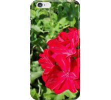 bright red flower iPhone Case/Skin