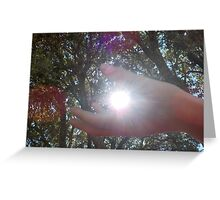 Catch the light. Greeting Card