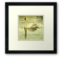 Avian Beauty ~ Part Twenty Framed Print