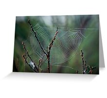 Spiders Web Greeting Card