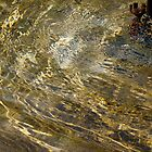 Golden Fountain Water: Light patterns on water surface by RocklawnArts