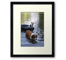 NOT Happy When Buddy Gets More Attention Framed Print
