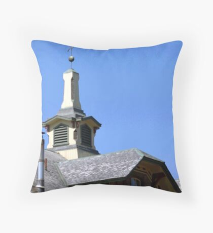 ROOF TOPPER Throw Pillow