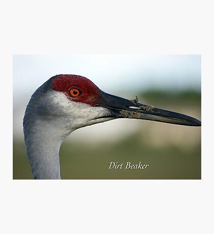 Dirt Beaker Photographic Print