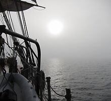 Sunrise through the Fog by Rochelle Smith