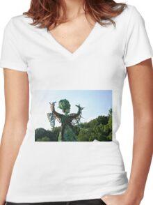 Fairy Women's Fitted V-Neck T-Shirt