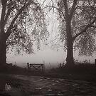 door in the fog by marcelo de la torre