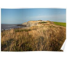 Clifftop at Kilve Beach Poster
