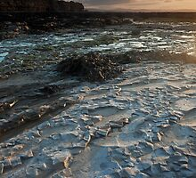 Fossil Beach by kernuak