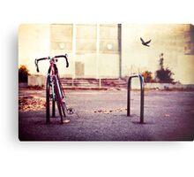 Abandoned bike Metal Print