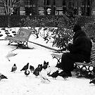 The Bird Feeder by Virginia Kelser Jones