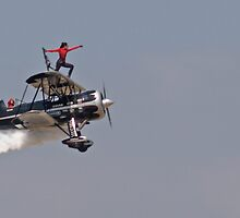 Wing Walker by Steve Hunter