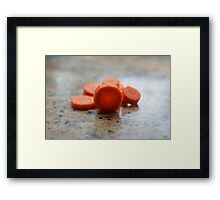 I LOVE carrots! Framed Print