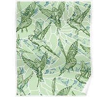 Budgie Pattern Poster