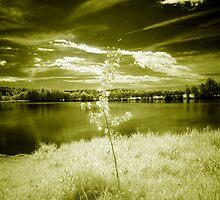 Lonesome Teenager by Ethem Kelleci