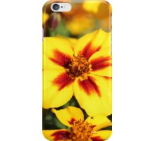 Yellow & Red iPhone Case/Skin