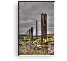 Timber Groynes (HDR using Photomatix) Canvas Print
