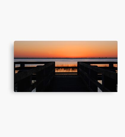 Last Sunlight Canvas Print