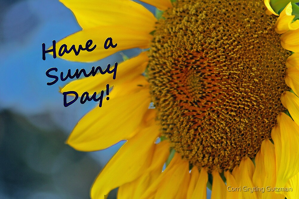 Have a Sunny Day Sunflower Card by Corri Gryting Gutzman