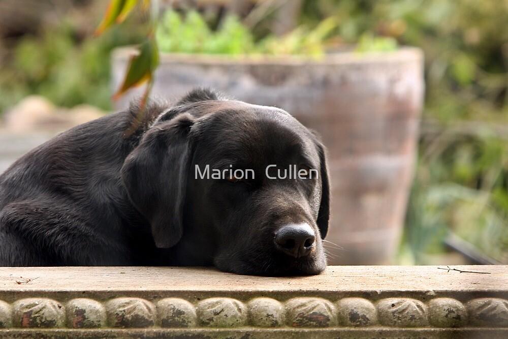 Dejected by Marion  Cullen
