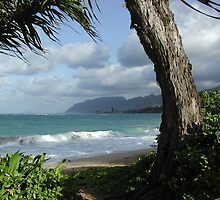 Oahu Beach by John N.  Stewart
