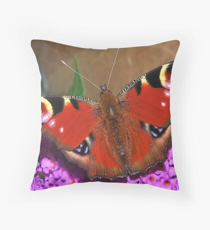 Visiting  Peacock Throw Pillow