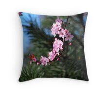 Washington Cherry Blossoms Throw Pillow