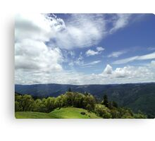VISTA VISION Canvas Print