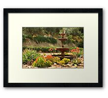 Cactus Fountain Framed Print