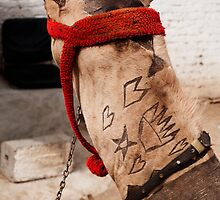 Camel Tattoo by Luke Prudence