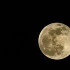 Full Moon by redashton