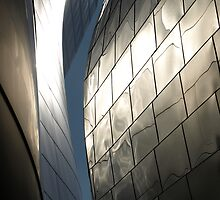 Steel Canyon - Walt Disney Hall by redashton
