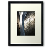 Steel Canyon - Walt Disney Hall Framed Print