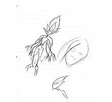 Leaf  Man Doodle Photographic Print
