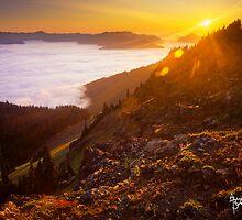 Hurricane Ridge Sunset by Alex Burke