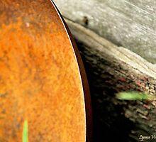 Rusty Wok by Lyana Lynn