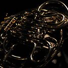 French Horn in high contrast by Lizzie Phillips