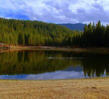 Mountain Lake in Sequoia National Forest  by Cupertino