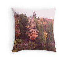 Autumn At Parker Dam Throw Pillow