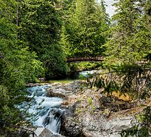 Upper Qualicum Falls by Rick Ruppenthal