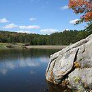 The Rock by teresa731
