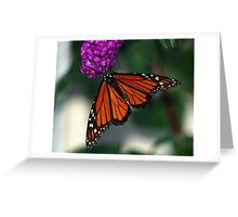 Giant Monarch Greeting Card