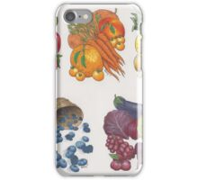 Fruits & Veggies  iPhone Case/Skin