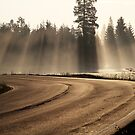 25.7.2015: Road at Summer Morning by Petri Volanen