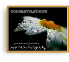 Super Macro Photography:Featured Banner  Canvas Print