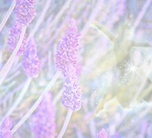 Lavender Fae by Aeve Pomeroy