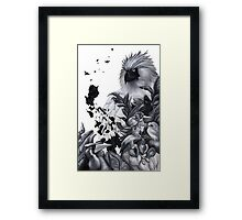 Philippine Birds Framed Print